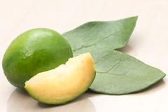 pineapple guava or feijoa fruit and leaves - stock photo