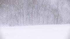 Winter Scenes Blizzard Stock Footage