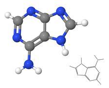 Adenine molecule with chemical formula Stock Illustration