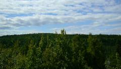 Overlook Green Forest with Blue, Cloud Filled Sky - stock footage