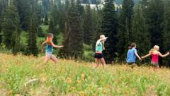 Group Of Five Teenage Girls Romping Through High Grass Of A Mountain Meadow Stock Footage