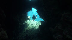Diver inside cavern Stock Footage