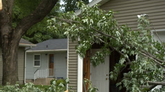 Downed Limbs By Garage2 Stock Footage