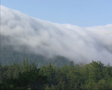 Stock Video Footage of Fog cloud slowly creeping over edge escarpment in Semmering, Austrian Alps