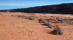 United States of America, USA, Utah, Coral Pink Sand Dunes State Park Stock Footage