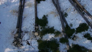 Stock Video Footage of AERIAL: two loggers cutting branches