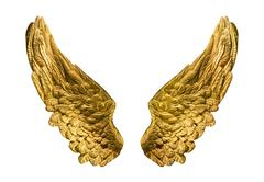 Symbolic composition of golden wings isolated onwhite. Stock Photos