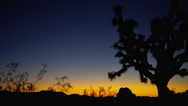 SUNRISE COLORS AT JOSHUA TREE NATIONAL PARK (PAN) # 2 Stock Footage
