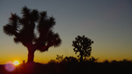 SUNRISE COLORS AT JOSHUA TREE NATIONAL PARK (PAN) # 5 Stock Footage