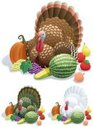 Thanksgiving Turkey - stock illustration