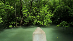 Mangrove forest protect coastal areas, Thailand - stock footage