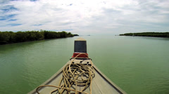 Long tail boat in motion Mangrove forest, Southeast Asia Stock Footage