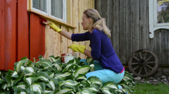 Painter girl paint rural homestead wooden wall with brush in red Stock Footage