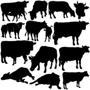 Stock Illustration of Cow Silhouettes