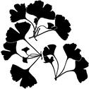 Stock Illustration of Ginko Biloba Silhouettes
