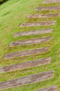 Garden stone path with grass growing up between the stones . Stock Photos