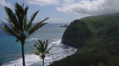 HAWAII – POLOLU LOOKOUT – COASTAL CLIFFS AND PALM TREES (ZOOM IN) Stock Footage