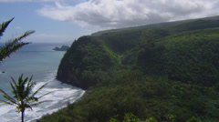 HAWAII – POLOLU LOOKOUT – COASTAL CLIFFS AND PALM TREES (PAN) # 2 Stock Footage