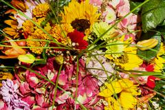 Bouquet of sunflowers, alstromeria, gerbera, chrysanthemum and lily Stock Photos