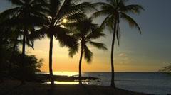 HAWAII – ANAEHOOMALU BEACH – SUNSET, PALM TREES Stock Footage