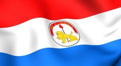 Flag of paraguay Stock Illustration