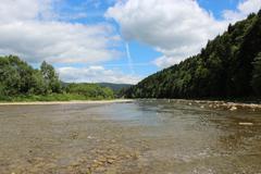 Beautiful speed mountainous river Stock Photos