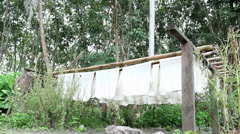 Rubber raw sheets hanging on bamboo sticks ,Thailand Stock Footage