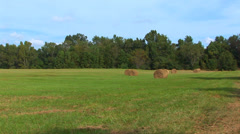 Field With Round Bales Of Hay Stock Footage