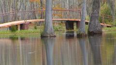 Foot Bridge In Bayou Stock Footage