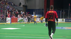 Soccer Goalie, Player, Football, Sports Stock Footage