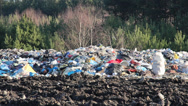 Stock Video Footage of Non biodegradable garbage at landfill. Forest in background.