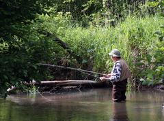 morning trout fishing - stock photo