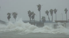 Hurricane Alex Rough Surf and Storm Surge Stock Footage