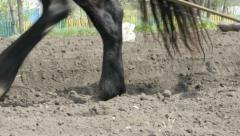 Ploughing the Field with Horses Stock Footage