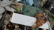 Stock Video Footage of Electronic waste at garbage landfill.