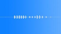 Woodpecker  2. Sound Effect