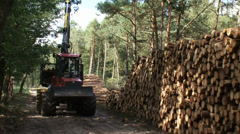 Stacking timber along sand path in forest with logging forwarder - medium shot Stock Footage