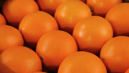 Stock Video Footage of Orange fruits
