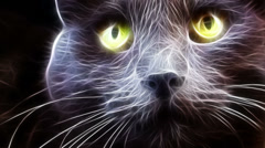 Fractal Cat - stock footage