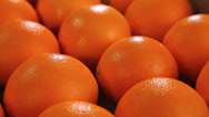 Stock Video Footage of Beautiful ripe oranges