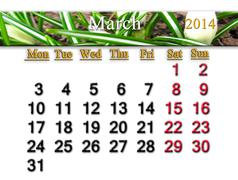 Stock Illustration of calendar for the march of 2014 year