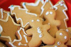 Gingerbread Christmas - stock photo