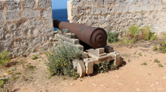 Cannon in wind in fort with plants - stock footage