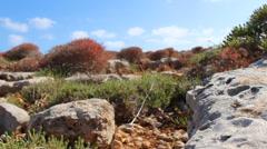 Dry desert rocks scene Stock Footage