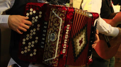 Accordionist Playing With His Accordion Stock Footage