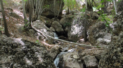 Forest and small waterfall in Ghalat mountains. Iran Stock Footage