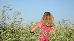 Blonde girl goes through the long grass wild caraway on summer Stock Footage