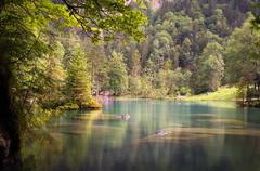 Lake in the woods Stock Photos