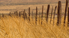 High Desert Grass Old Fence Stock Footage