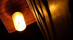 Moths flying around a light bulb Stock Footage